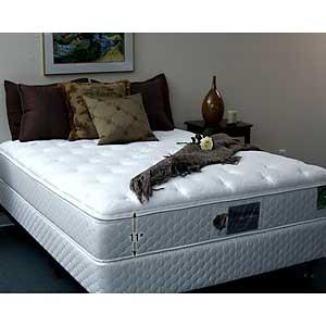 Flotation Sleep 8300 Non Pillow Top